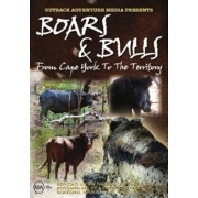 boars and bulls